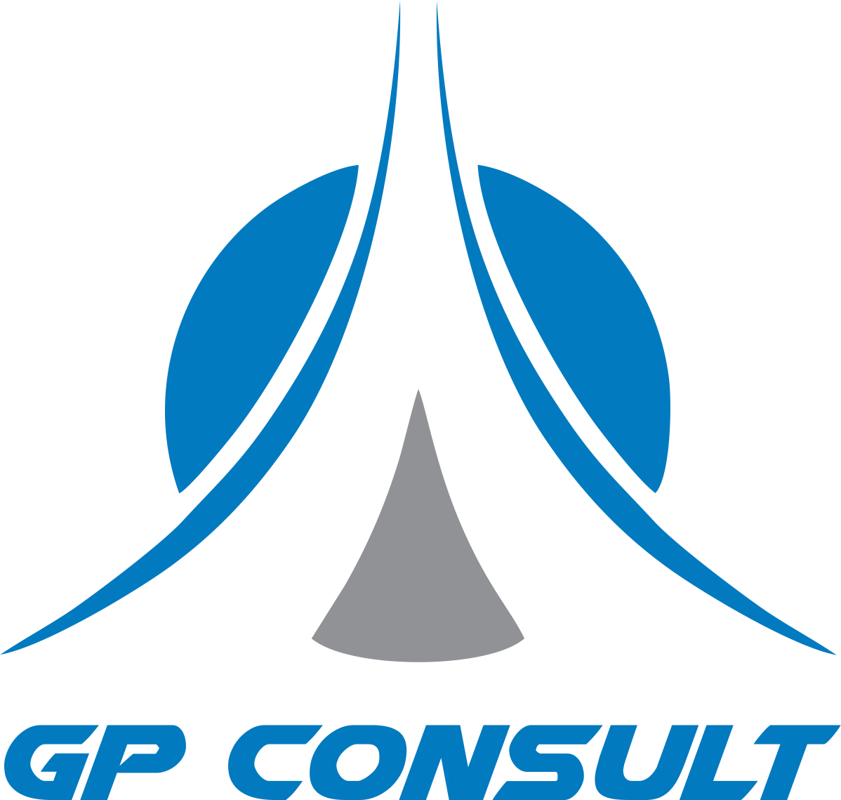 logo_2018_gp_consult